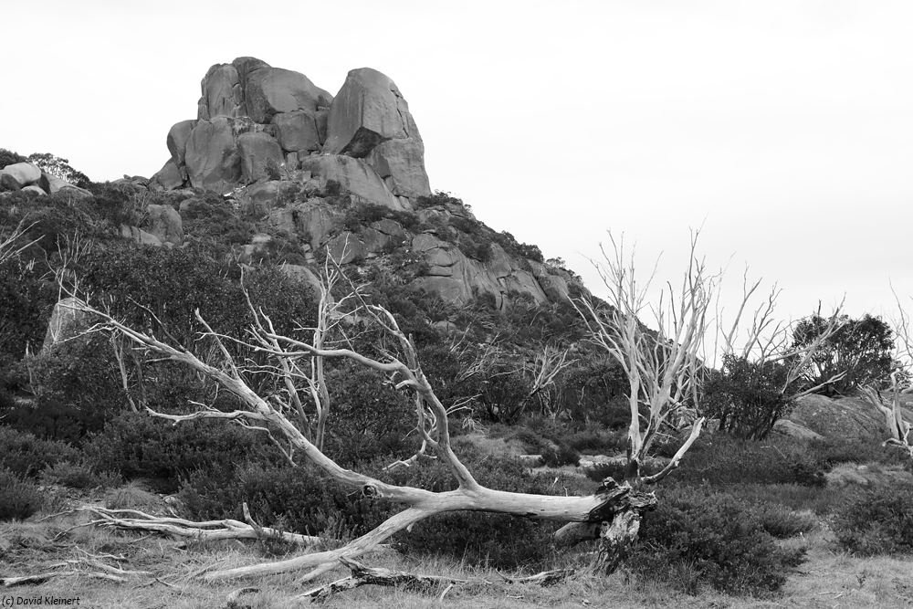 Mount Buffalo National Park